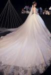 Robe de mariée avec de jolie manches en transparences parsemées de fines dentelles